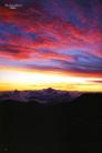 Ehara_hawaii007