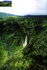 Ehara_hawaii008